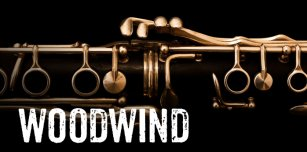 care-2-rock-online-music-lessons-woodwind